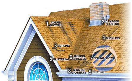 roofing contractors, roof shingles, roofers, roofer, roofing, roofing contractor